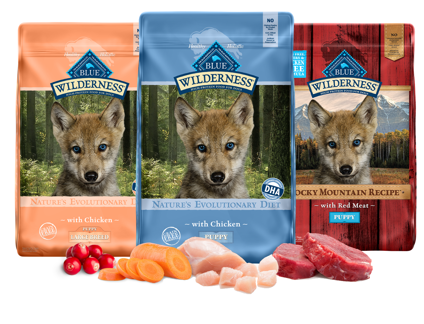 Blue Buffalo Wilderness Natural Puppy High Protein Grain Free Chicken Dry Dog Food 24 Lbs Petco